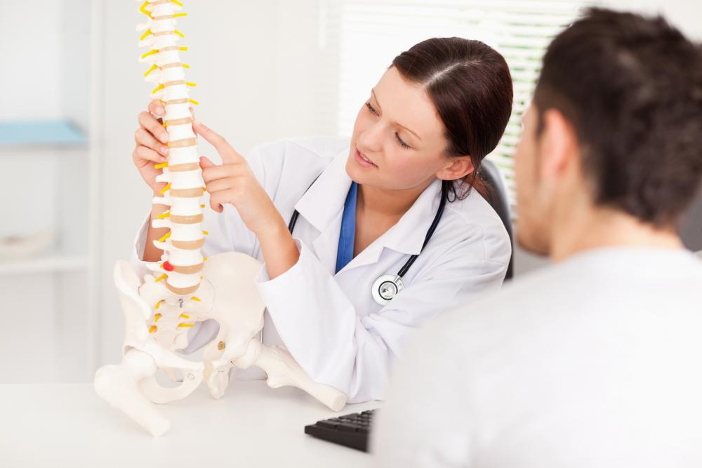 chiropractor showing new patient model of spine in Sewell, NJ